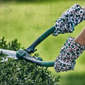Garden Basic